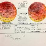 【天文】皆既月食観察記録