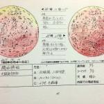 【天文】皆既月食を観測しよう